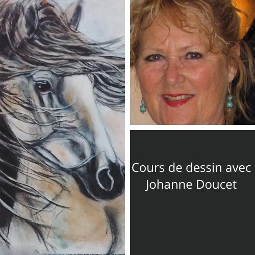 Cours d'arts en ligne Johanne Doucet Cours de dessin en vidéo